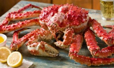 Best King Crabs Dishes to Keep While Travelling
