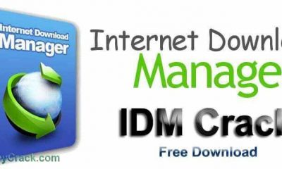 Internet Download Massager
