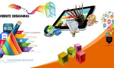 Website Design Company in Delhi, Website Design Companies in Delhi